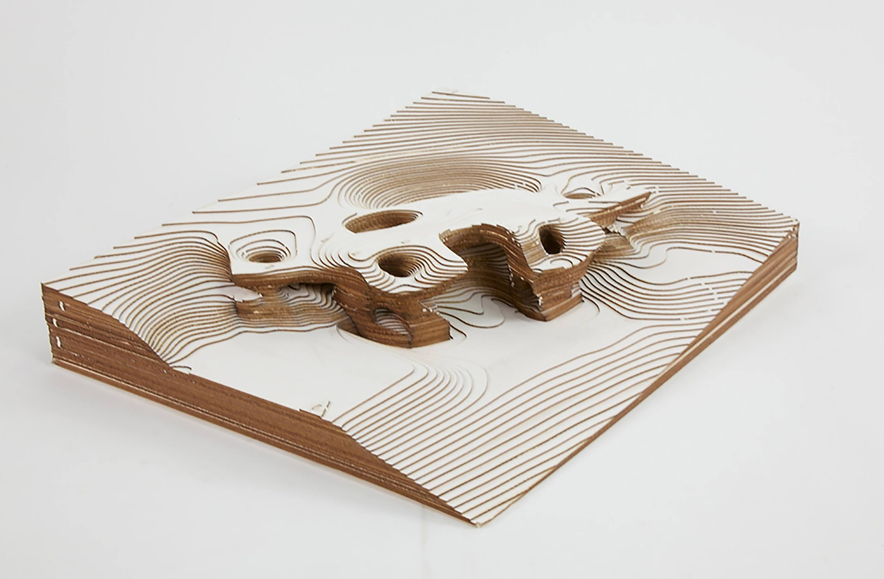 Topographical model front